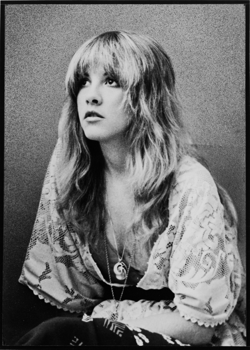 stevie nicks 3 ... it really a good strategy to dress in full tranny regalia at the rally?